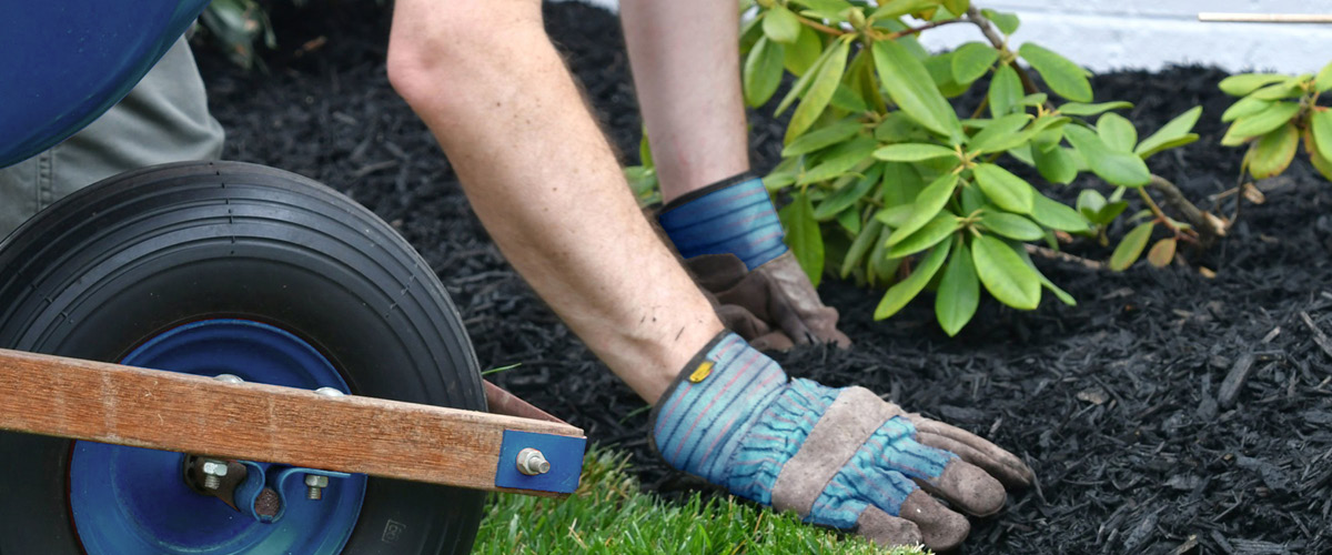5 Landscaping Projects To Boost Your Home's Value