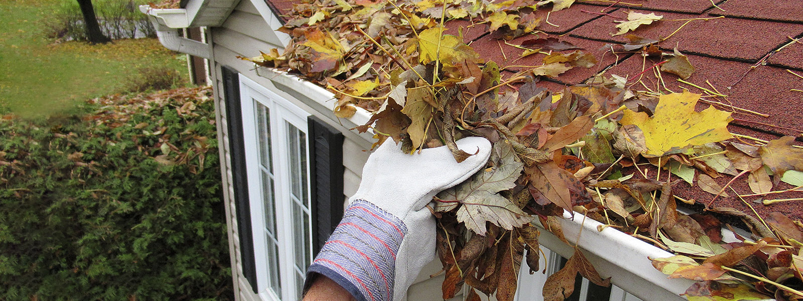 A homeowner cleans a gutter full of leaves