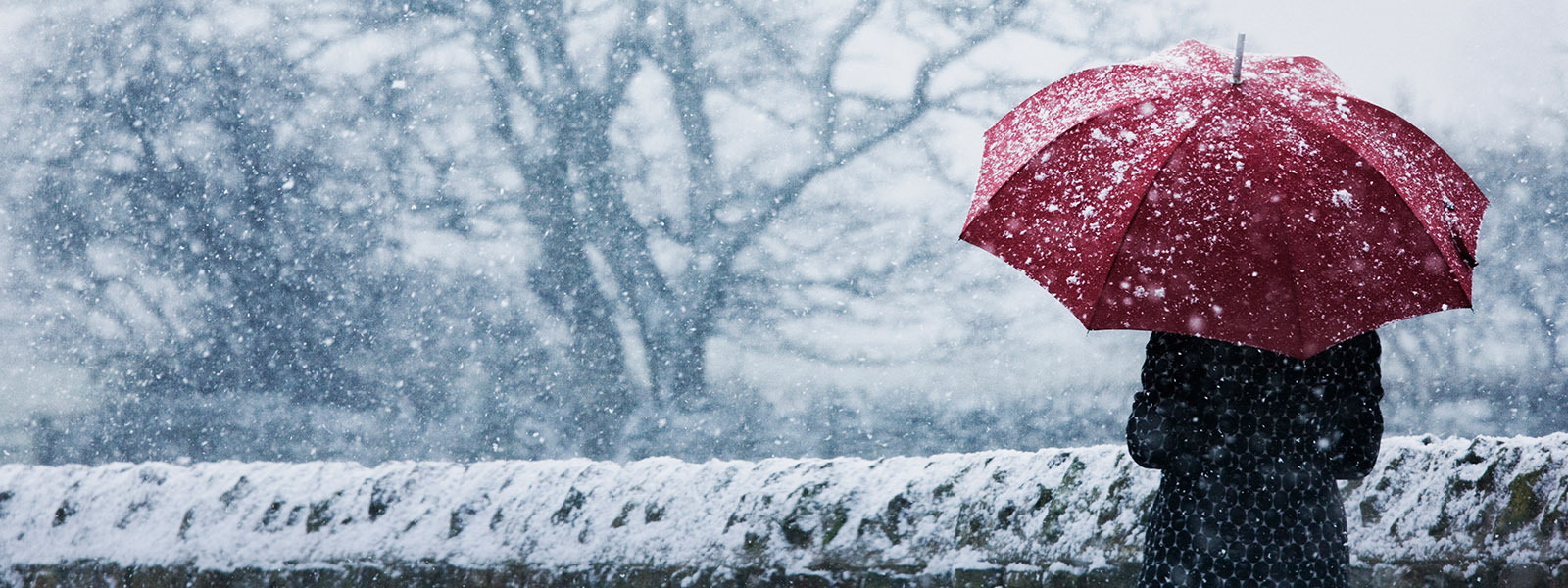 Woman walking with an umbrella in a snowstorm