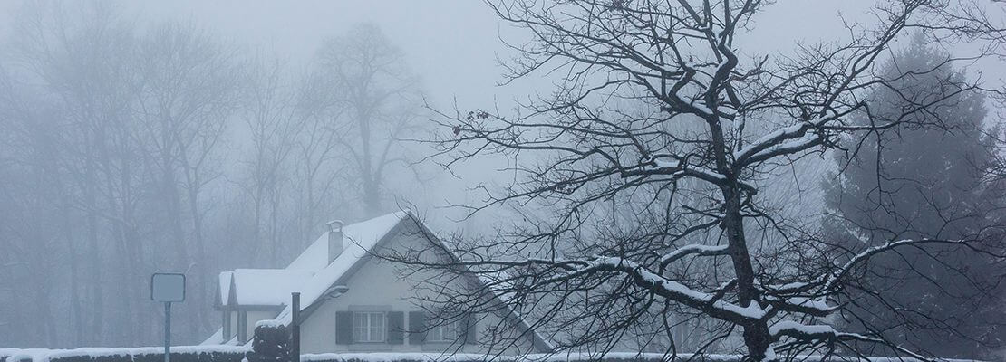 The Homeowner's Guide for Dealing with Winter Storm Damage